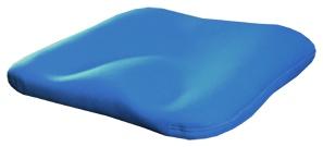 universal posture cushion