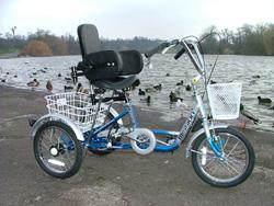 trike with backrest
