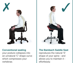 How the Saddle Seat works  sc 1 st  Independent Living & The Bambach Saddle Seat - Independent Living islam-shia.org