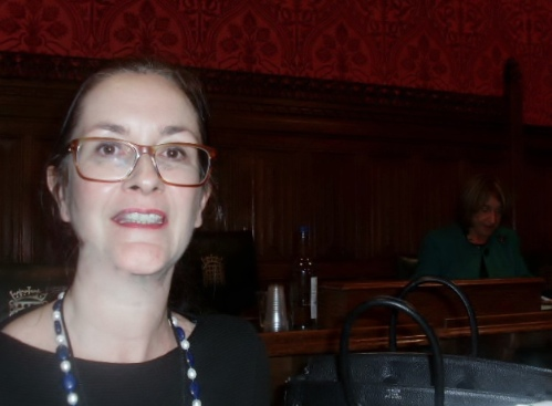 Laura at APPG meeting, Walking the Tightrope