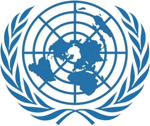 UN on Welfare austerity In the UK