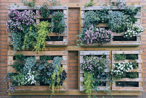 Vertical Garden makes the most of space